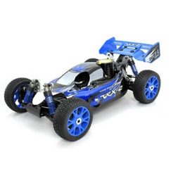 VRX 1/8 BUGGY